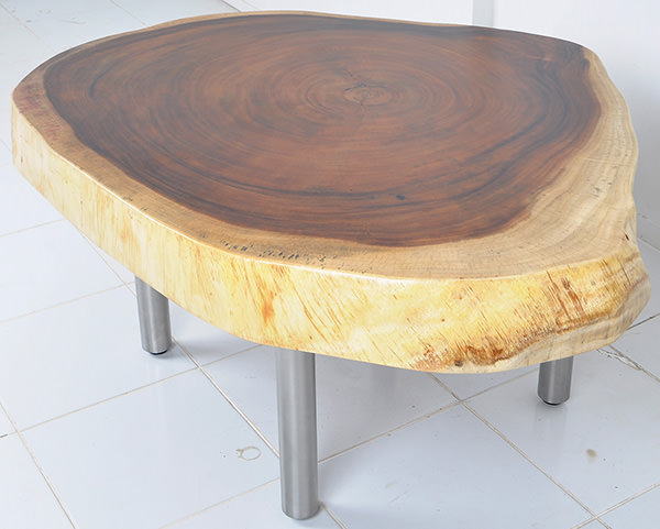 natural shaped suar coffee table with stainless steel legs