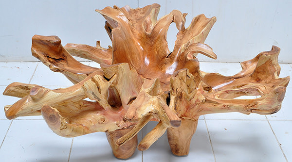teak root wood coffee table