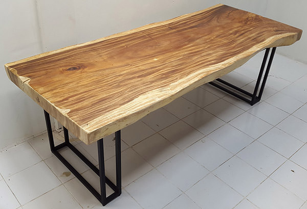 solid natural rain tree table with black powder coated iron legs