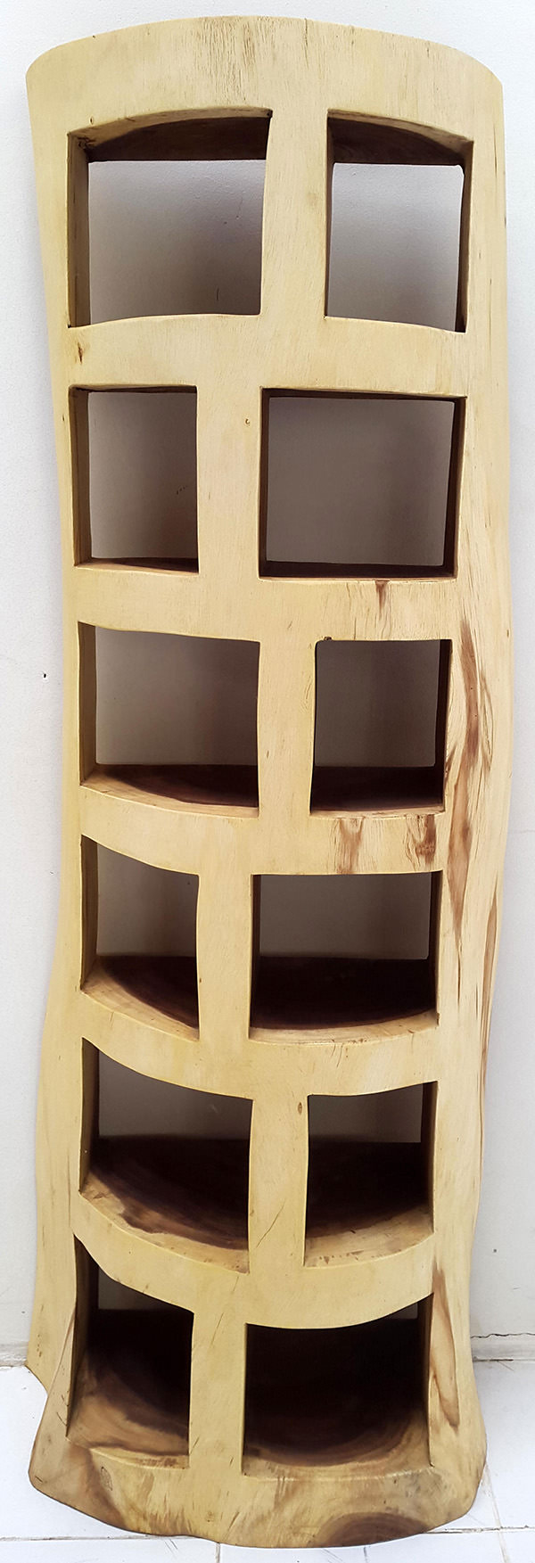 suar bookcase with organic shapes