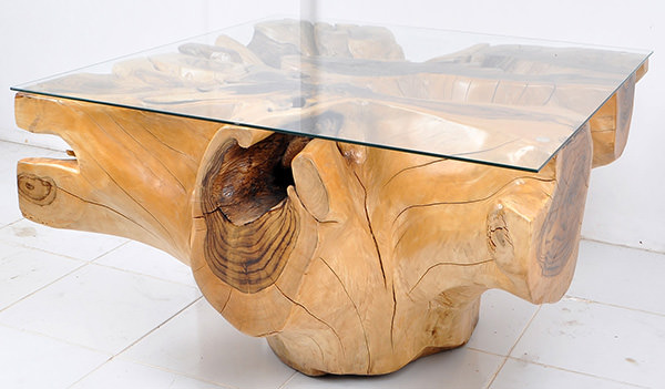solid teak organic root coffee table