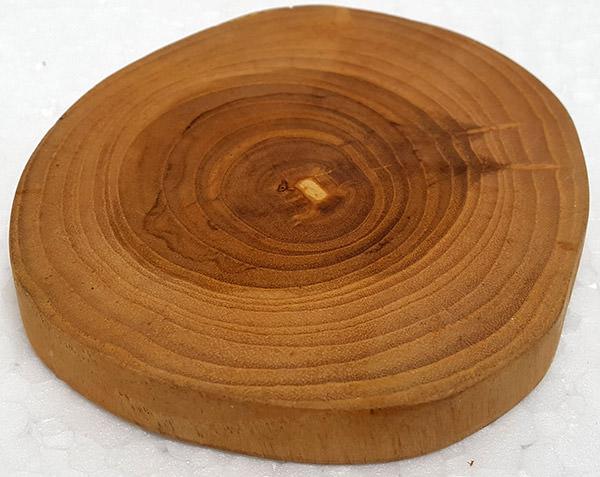 solid wood slice