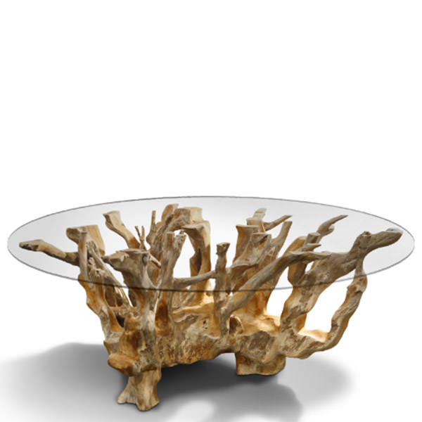 Natural roots teak coffee table